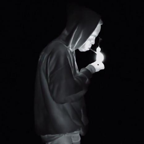 Earl Sweatshirt Earl Video